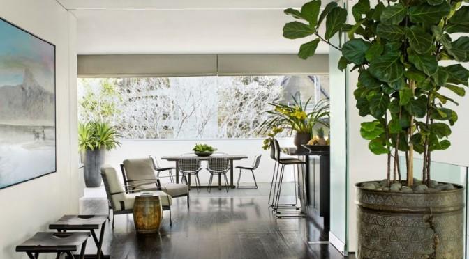 Как да организираме цветята в къщата според правилата на ФЪН ШУЙ